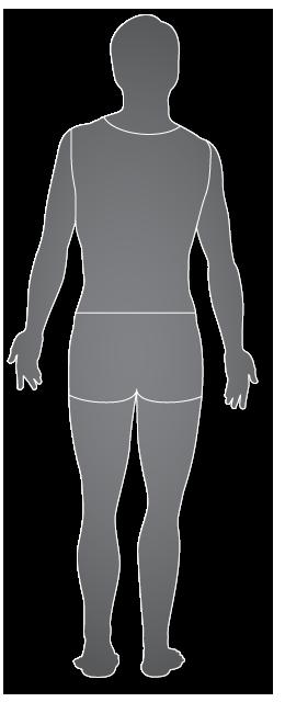 Hombre, vista posterior